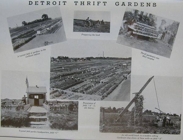 Thrift Gardens Pamphlet.jpg