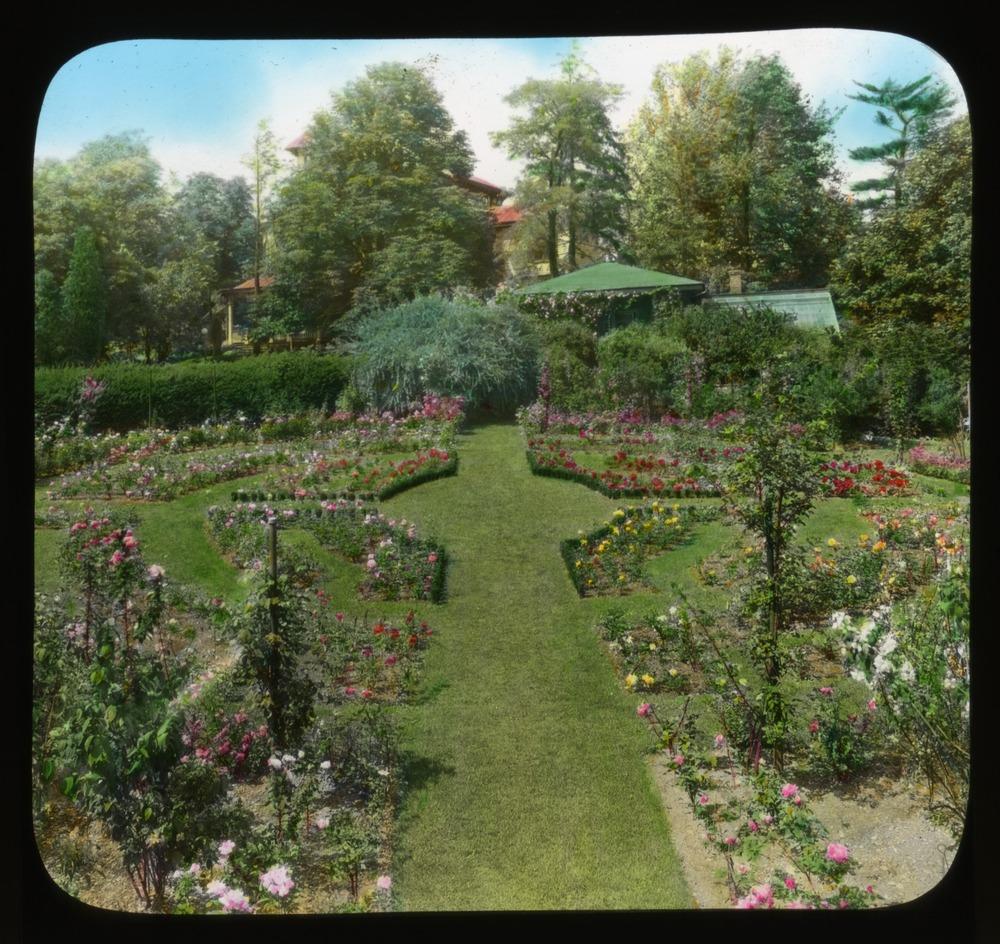 Garden pathway with parterre