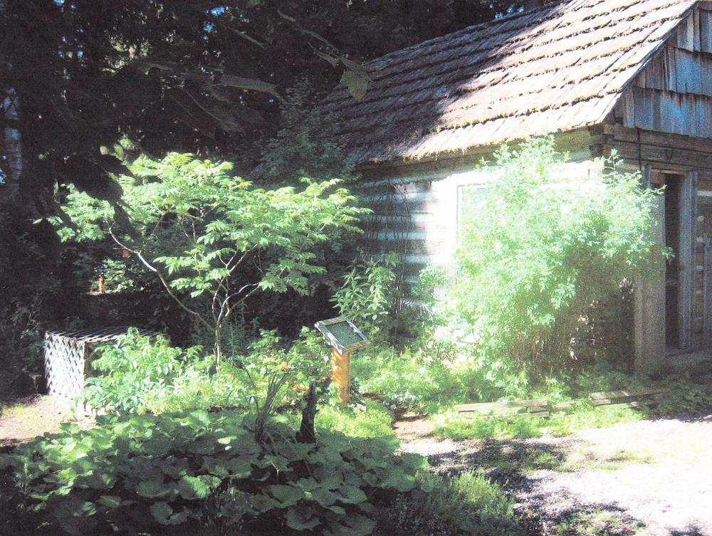 The Medicinal Garden and cabin