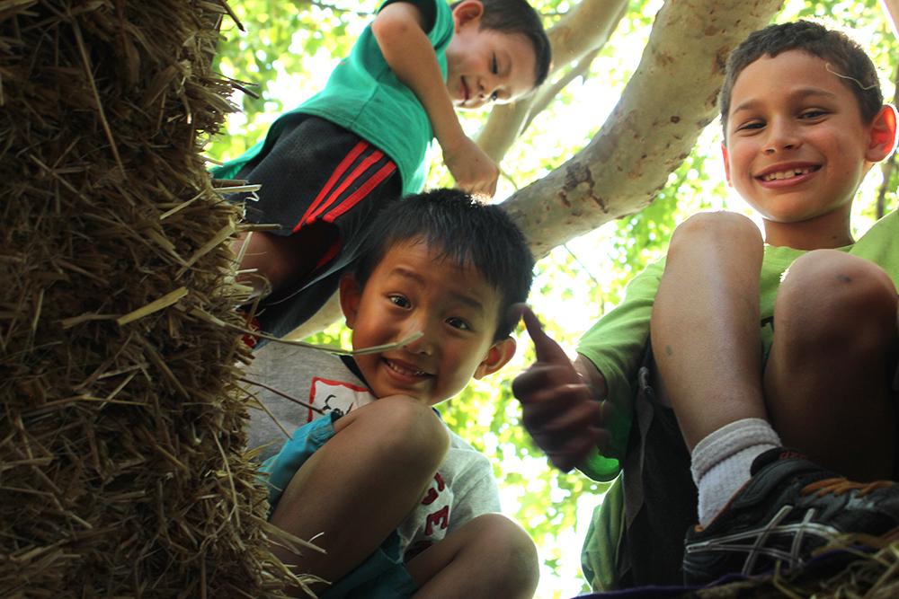 ithaca_childrens_garden4.jpg