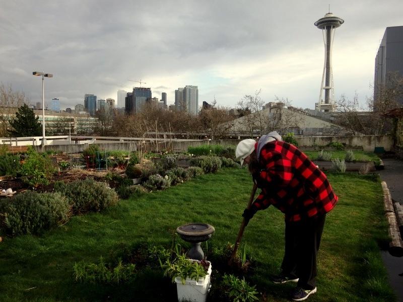 Bonnie working in her garden