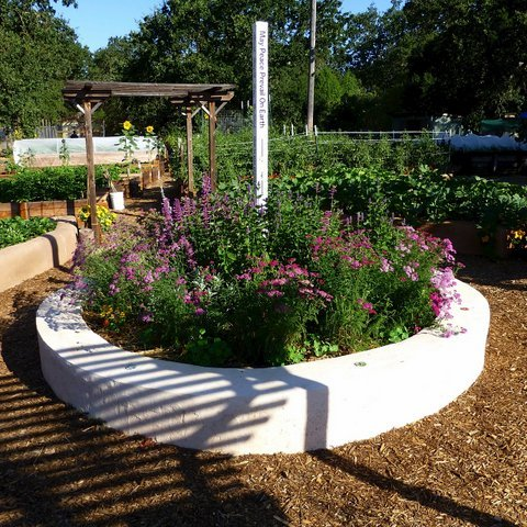 The Lafayette Community Garden peace pole, surrounded by a raised bed of flowers.
