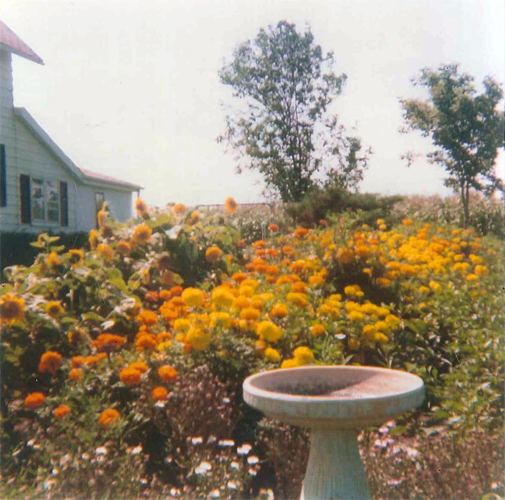 Summer, 1977