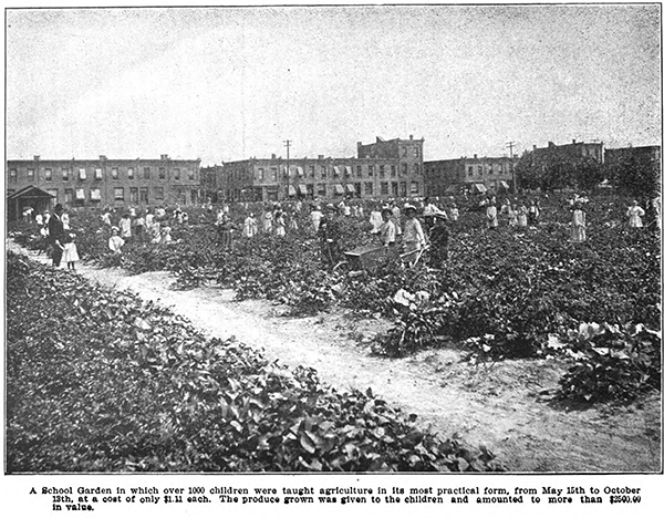 School Garden Philly from 1905 Report.jpg