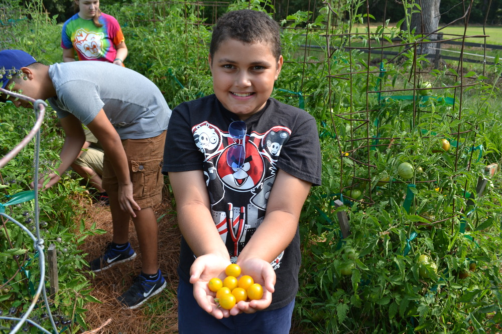 Campers at the Hickory Hill Children's Garden to learn to grow their own food