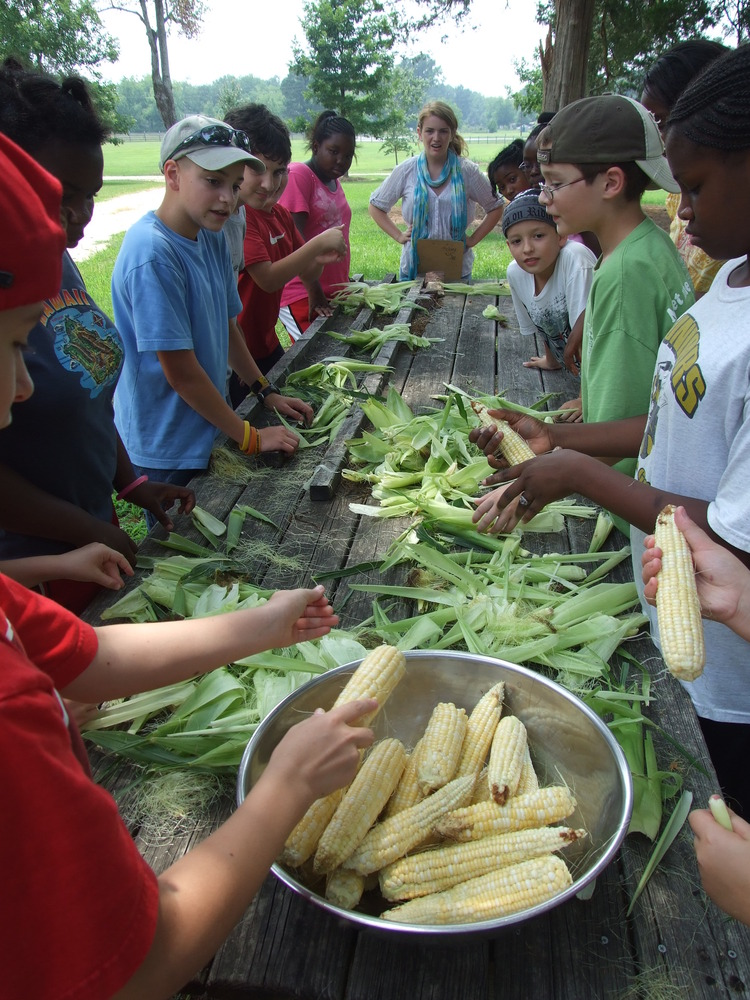 Campers at Hickory Hill House Museum in Thomson, Georgia, shuck corn in the garden.