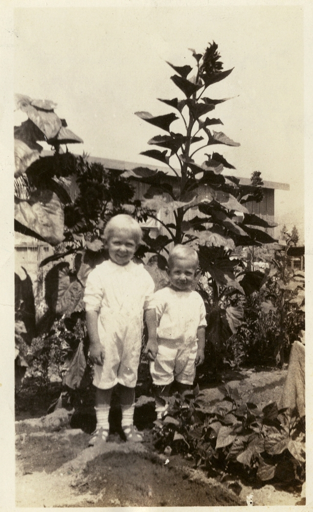 Sons of J.E.Moate in their home garden in Tujunga, California, circa 1924. Smithsonian Institution, Archives of American Gardens, W. Atlee Burpee & Company Records.