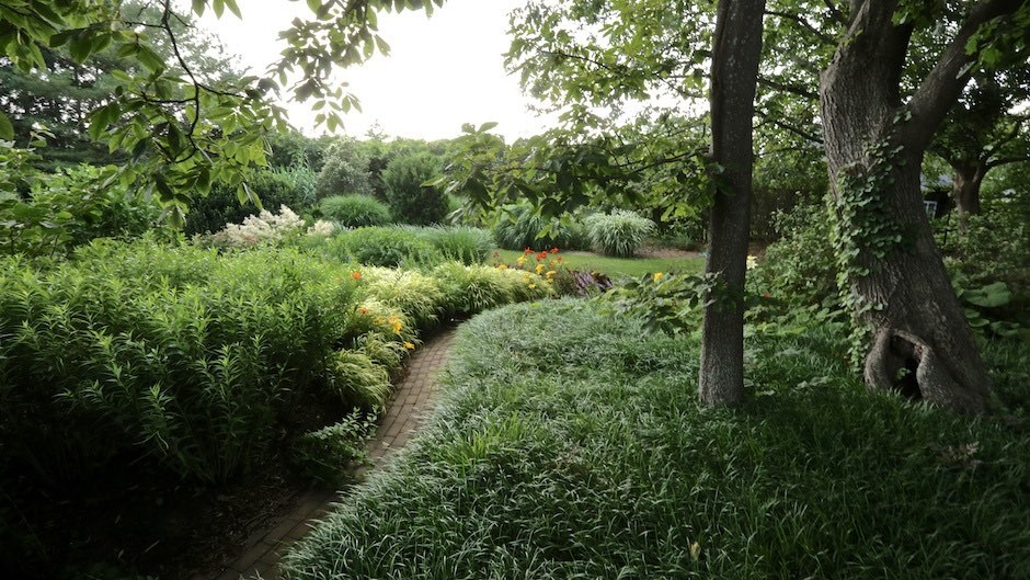 A meandering path