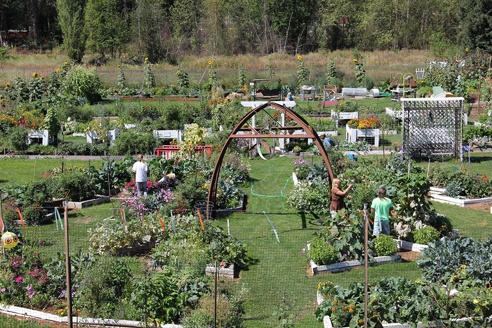 The Libby Area Community Garden in Libby, Montana