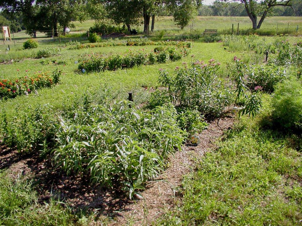 Butterfly garden flower beds