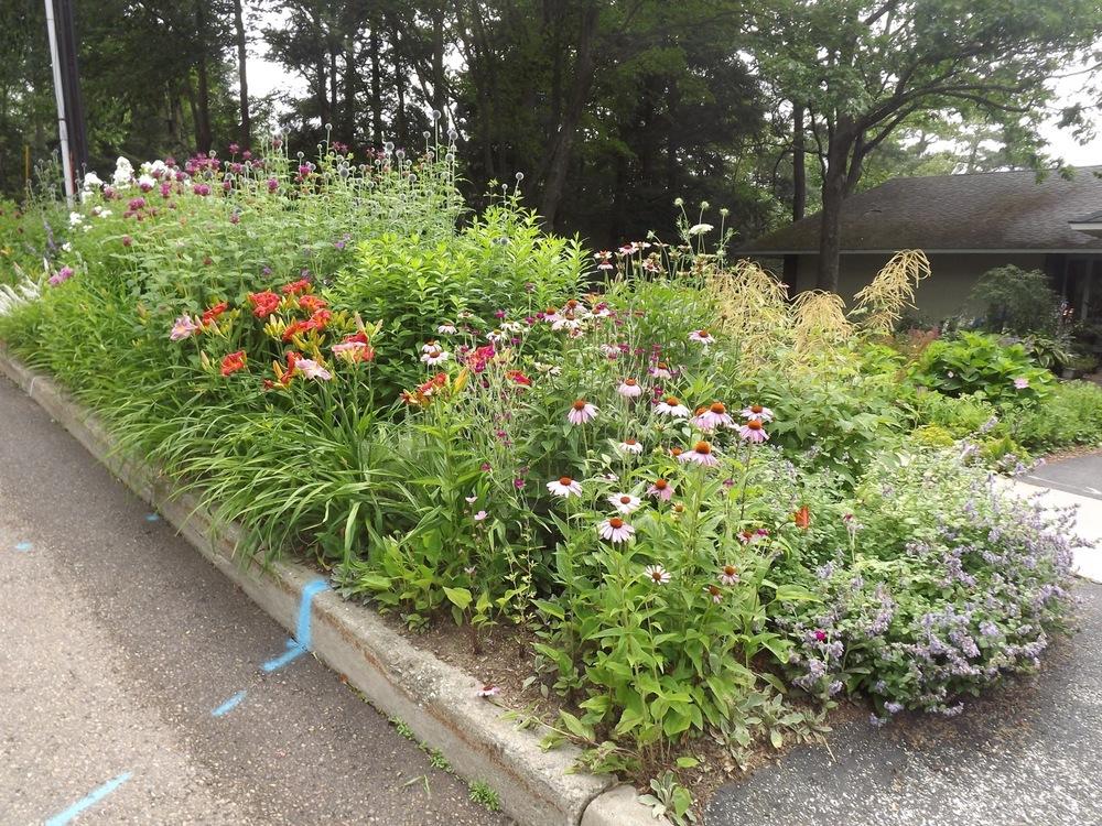 Greenbelt garden (from street)