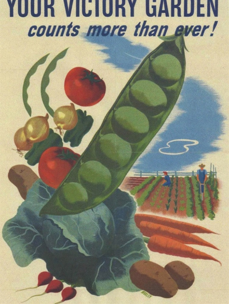 US government War Victory Garden poster from World War II.
