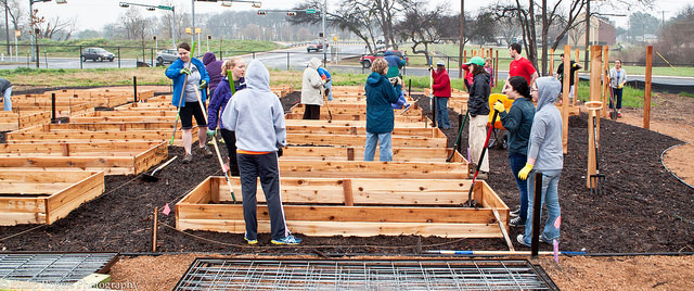 <p>Volunteers build garden beds</p>
