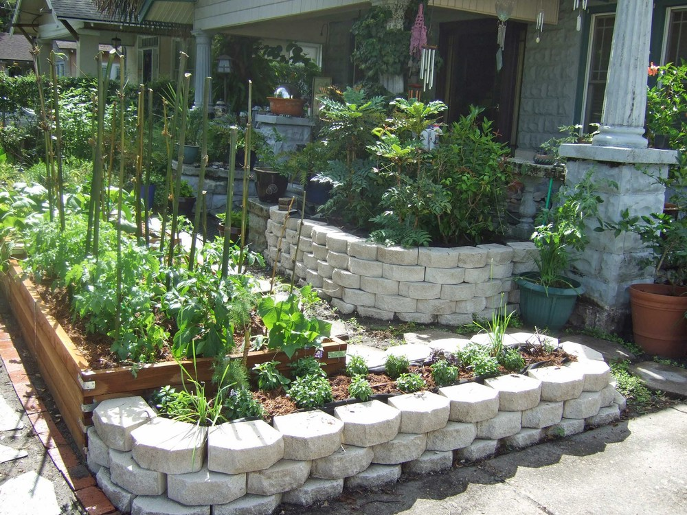 Raised beds and a variety of roses, ornamentals, and native plants replace what was a once a lawn.