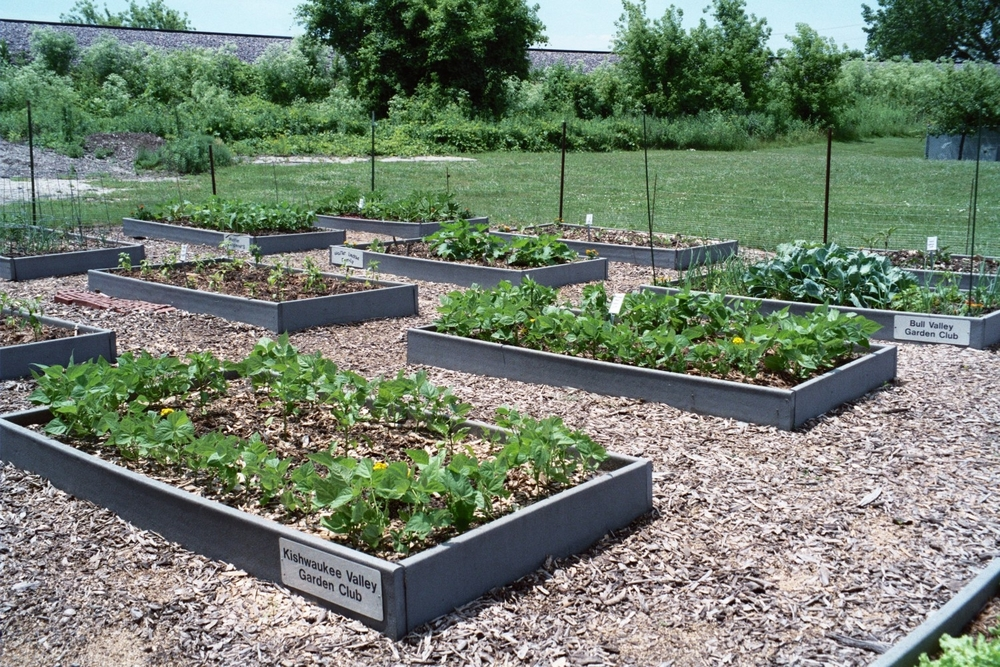Kishwaukee Valley Garden Club plot