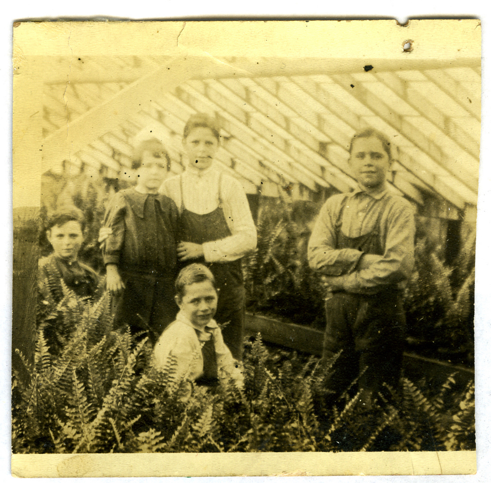 Alost grandchildren in greenhouse with ferns