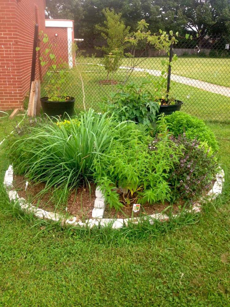 A circular, decorative garden bed