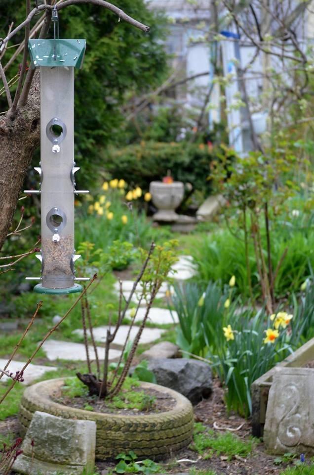 A bird feeder in Gregory's Garden