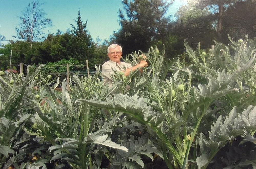 Nicola Ranieri poses with his 3,400 artichokes on his mini farm