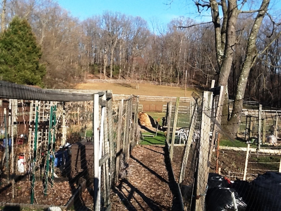 The community garden in late winter, 2014.