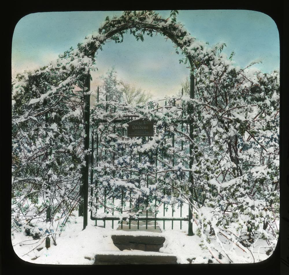 Snow-covered garden gate at Breeze Hill, 1921.