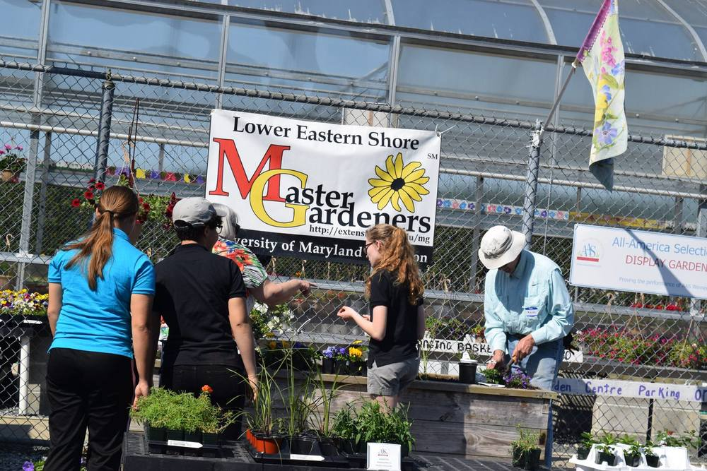 Lower Eastern Shore Master Gardeners