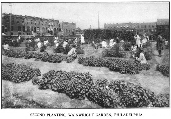 Philadelphia School garden from Among School Gardens 1911.jpg