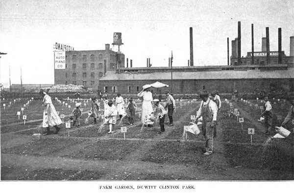 DeWitt Childrens garden 1906 report43-1.jpg