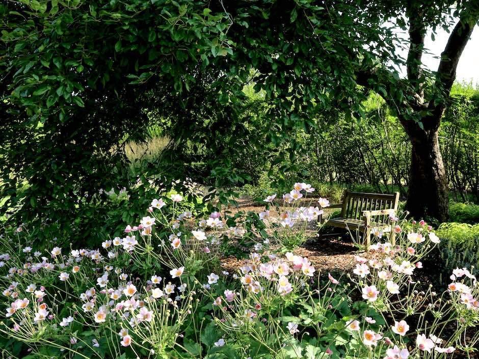 Bridge Gardens in spring