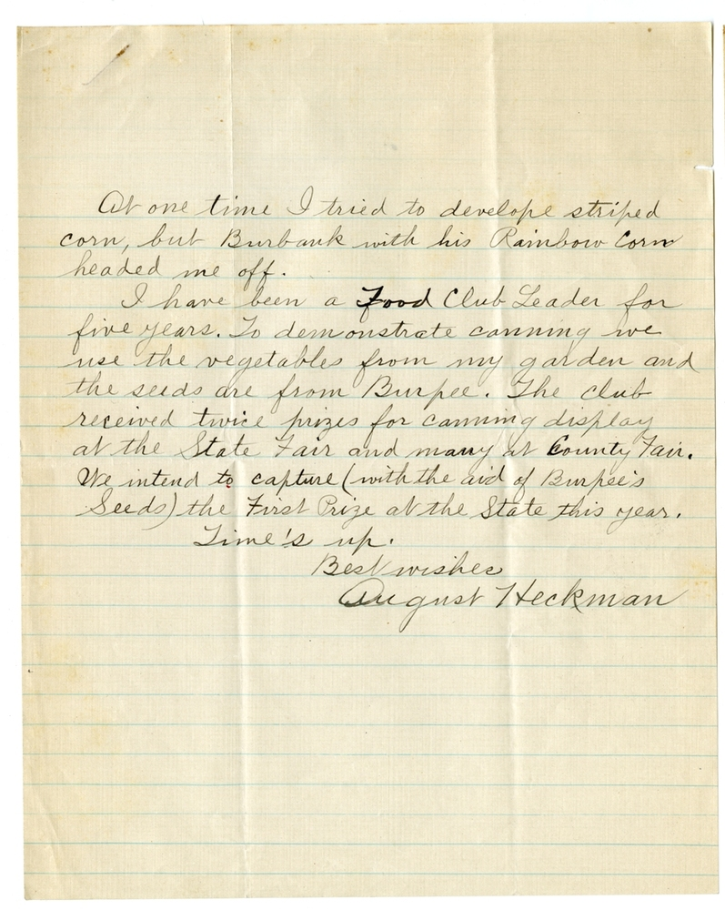 Second page of August Heckman's contest letter to Burpee & Company, circa 1924