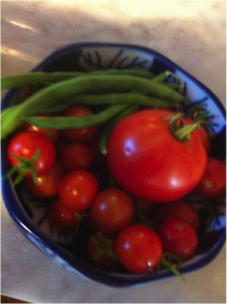Cherry tomatoes, regular tomatoes, and string beans that grew next to the beehive, 2013.