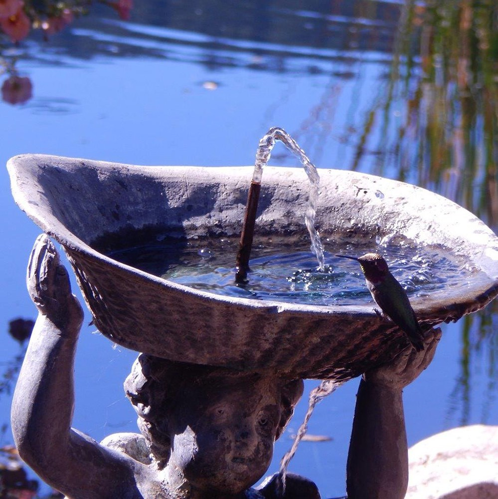 The Cherub Fountain