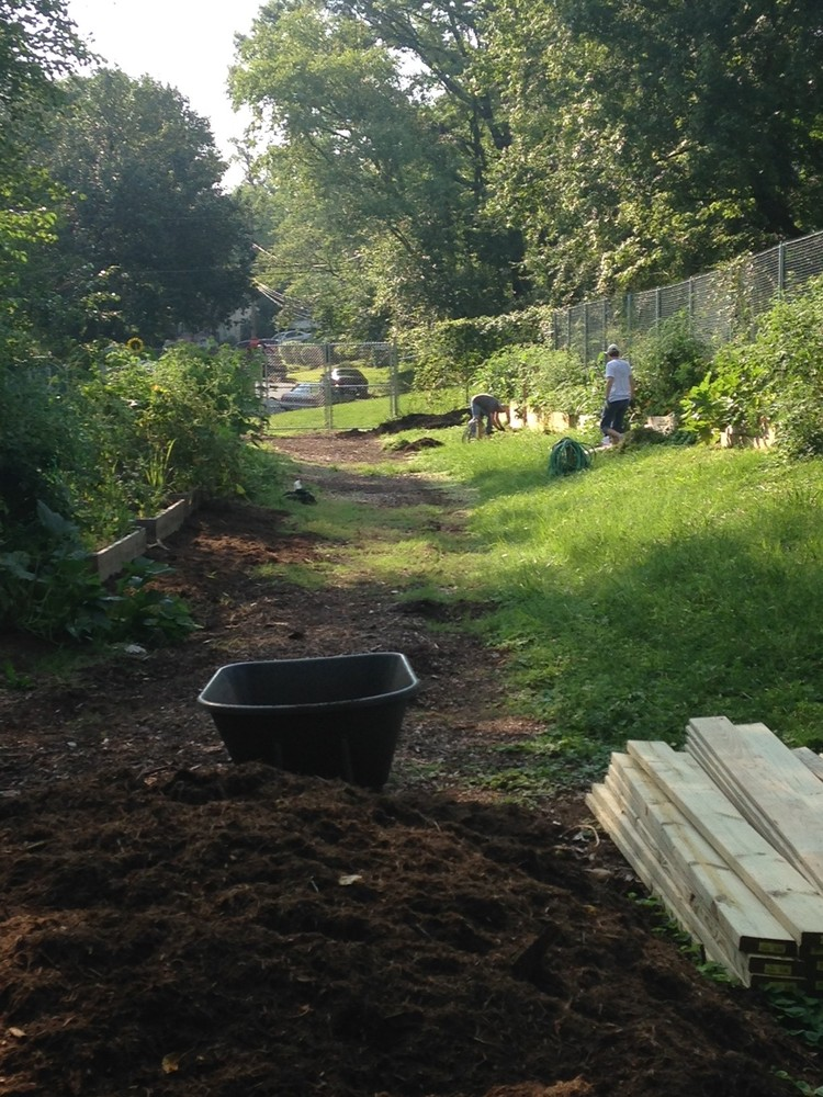 A path through Berwyn Heights Community Garden with plots on either side.