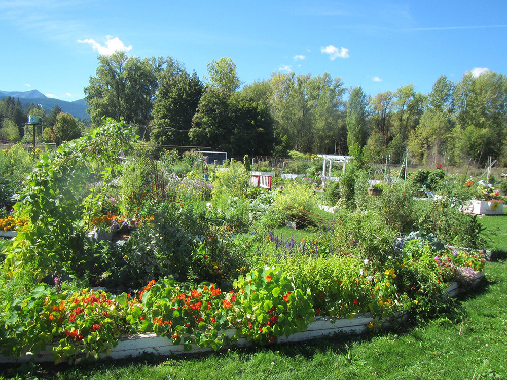 The Libby Area Garden in summer