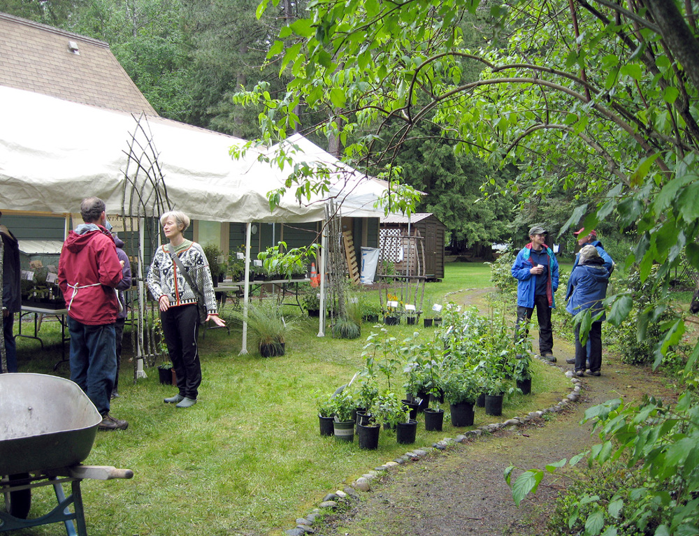 The Arbor Day Plant Sale