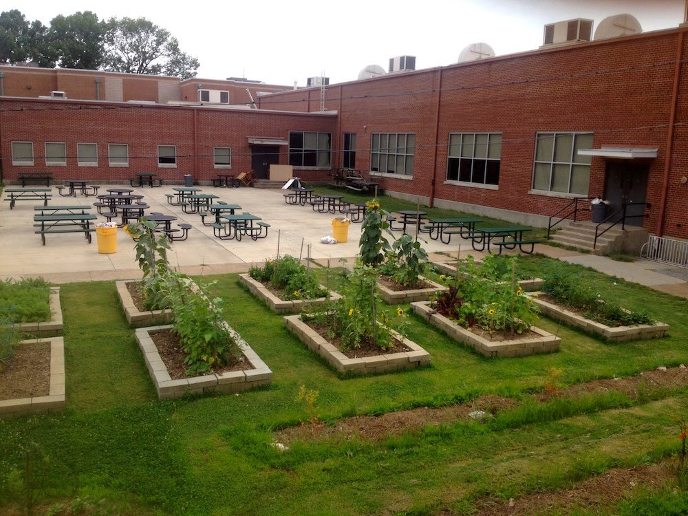 The garden is also a community space for classes and clubs