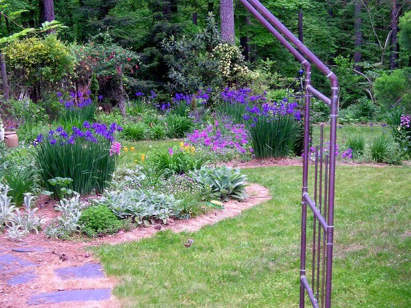 The perennial garden, viewed through a copper arbor at the entrance, May 1, 2004. Siberian irises are the star attraction. Over the years, various vines graced the arbor. A favorite was <em>Ipomoea alba</em>, a night blooming morning glory with 6-inch blossoms that glowed on moonlit nights.