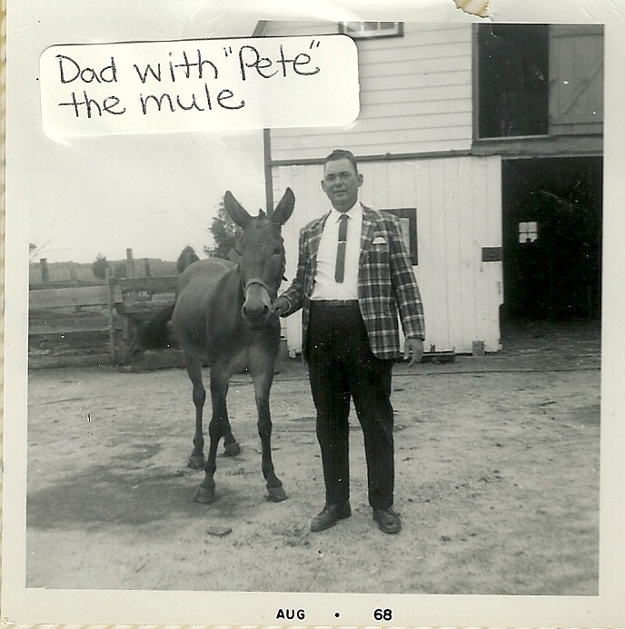The author's grandfather, John Walter W., with Pete the mule