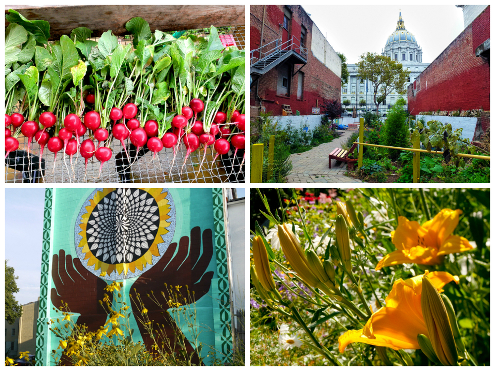 Collage of gardens included in the Community of Gardens digital archive.