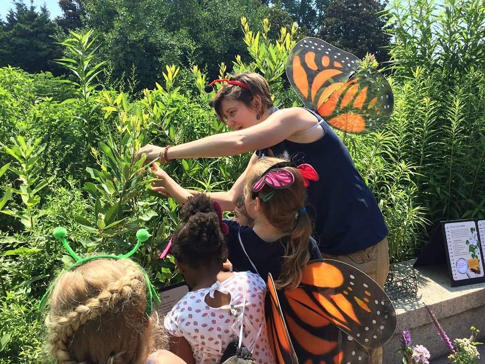 Smithsonian Gardens Pollinator Party