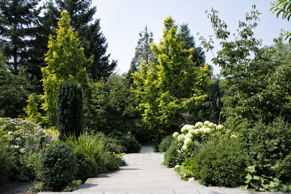 The grounds of the Bellevue Botanical Garden originally belonged to Cal and Harriet Shorts