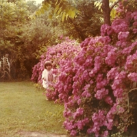 The author's sister in their grandmother's rose garden, Fort Payne, Alabama, 1975.