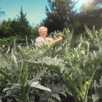 Nicola Ranieri poses with his 3,400 artichokes on his mini farm