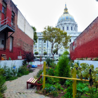At any moment the City of San Francisco may reclaim the lot and repurpose the space, but for now the members of the Please Touch Community Garden want to use the space constructively for community building. Photo by Gk Callahan, 2014.