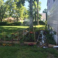 Cohen family garden